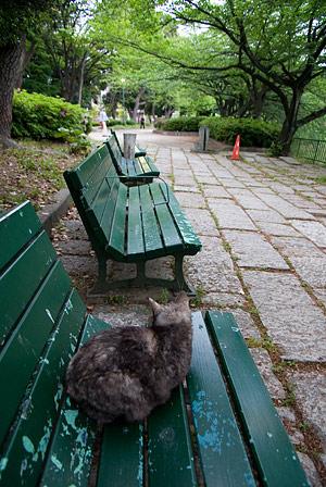名城公園-11