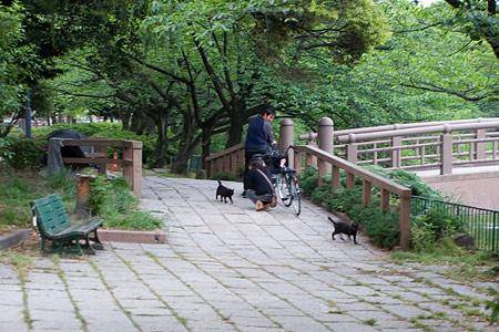 名城公園-9