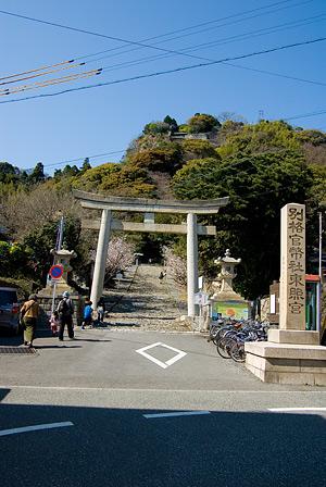 久能山を眺める