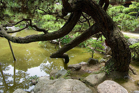 諸戸氏庭園2-4