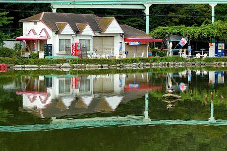 東山動物園雨3-5