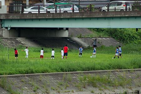 矢田川散歩1-8