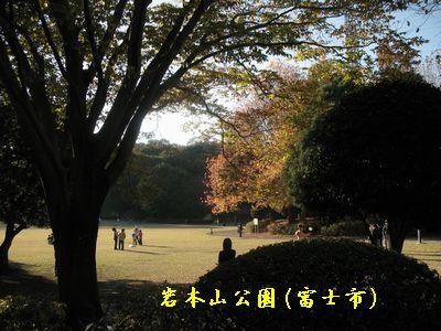 IMG_0229岩本山公園